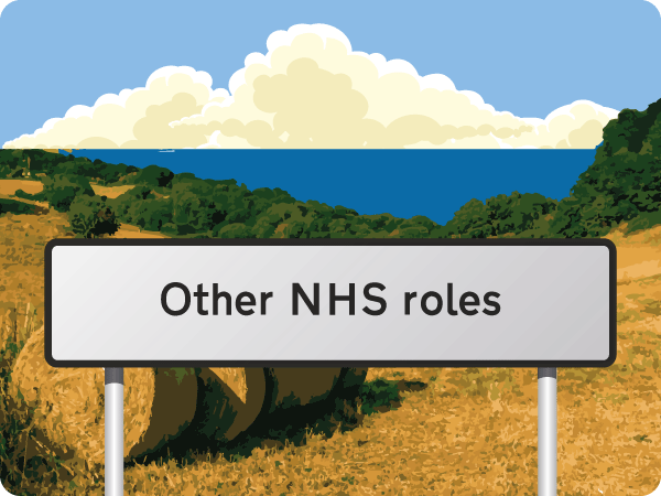 Other NHS roles