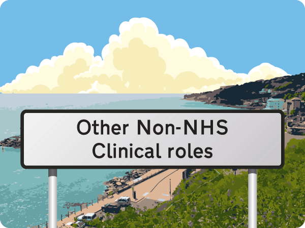Other Non-NHS Clinical roles